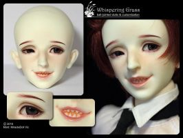 MiracleDoll Vic faceup by scargeear