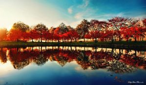Reflections II by MyLifeThroughTheLens