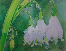 Raindrops on Snowbells by Harmony1965