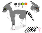 Link reference sheet by Black-Raven-eyes