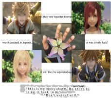 Questions - Kingdom Hearts 2 by tyou13440