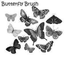 Butterfly Brush by PhoenixWildfire