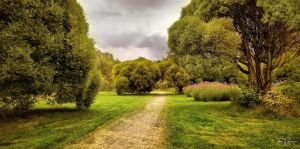 Walk in the park by Pajunen