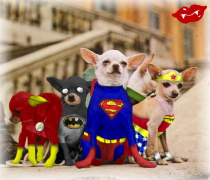 Justice League Chihuahuas by Mythical-Mommy