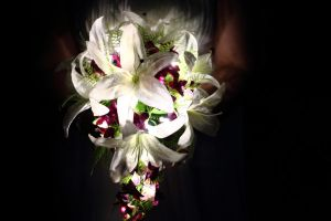 Light Boquet by TheRealCJ