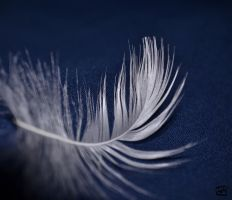 Feather Light by 00kikyo00