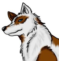 Leira wolf form by PhoenixWildfire