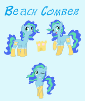 Beach Comber by Musicalmutt2