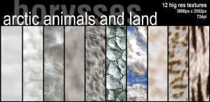 Arctic textures by borysses