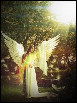 Angel by RikenProductions