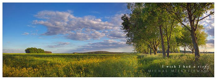 Among Fields Of Crystal by werol