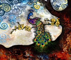 Peacock by jele