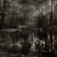 La mare aux fees VI by CountessBloody