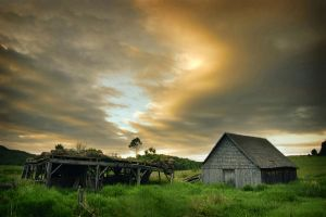 Rustic Morning by tfavretto