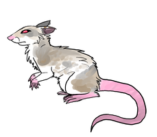 Rat For Krawatorii by Sour-Smoothie