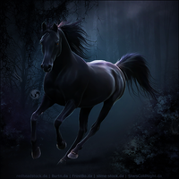 HEE Horse Avatar - Banquo by art-equine