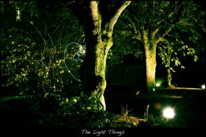 The Light Things 01 by Neimad-Design