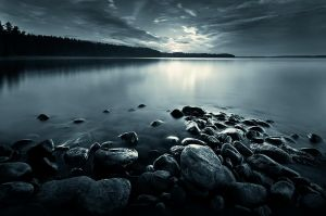 Feel Free by MikkoLagerstedt