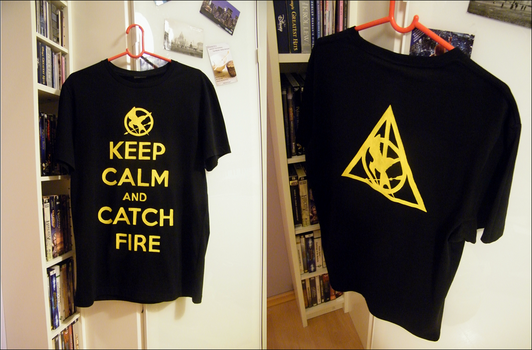 Keep Calm and Catch Fire by Nerrei