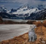 Snow Leopard by RebeccaLongArt