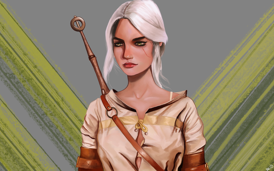 Ciri The Wither by Saliov