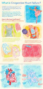 (INFOGRAPHIC Commission) Congestive Heart Failure by paje-chan