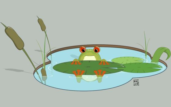 .: Miss frog :. by melimelo