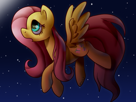 Flutter by Zoiby