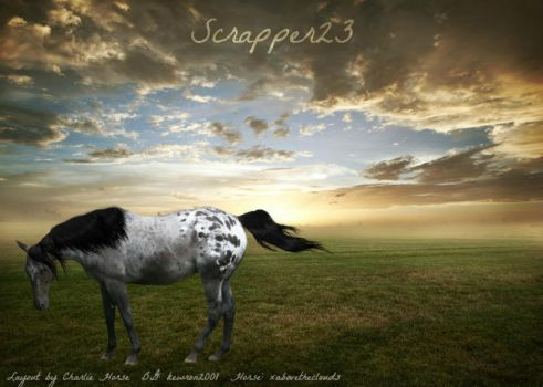 Scrapper23 by MissRoy15