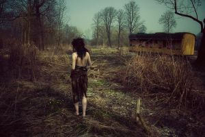 Wild place III by Silecia