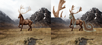 PROGRESS #3 (Hair base and antlers) by Twistyh-stock