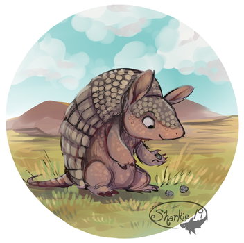 Armadillo by sharkie19