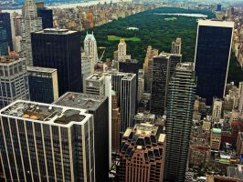 Central Park by Pecetta