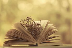 Vintage book ... by aoao2
