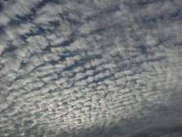 some little and fluffy clouds by leoaik