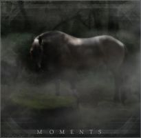 Moments by Steppums