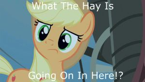 What The Hay!? by argo4017
