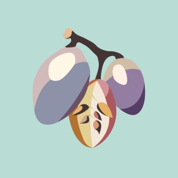 Grape fruit illustration by LIVEyourDR3AM