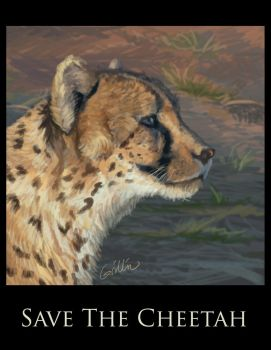Save the Cheetah by Griffin-Fire