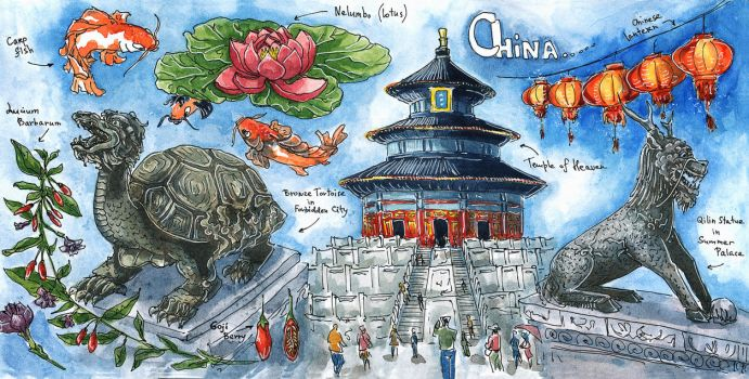 China sketch by Sever-Severin