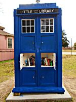 The Doctor's Library by Calypso1977