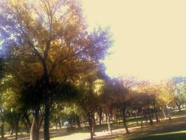 Autumn in the Park 02 by potalunga