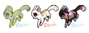 Kitty Adoptables :Closed: by theperfecta