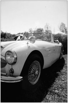 Austin Healey 3000 MkII White by TheOne85Ca