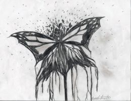 Death of a Butterfly by Phenolfailien