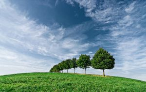 Hill and Trees by mARTinimal