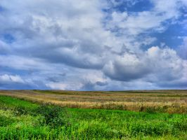 Field_stock by drowned-in-air-stock
