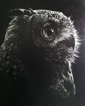 Owl Scratchboard AUCTION by TamberElla
