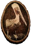 Pelican- Pyrography by lost-nomad07