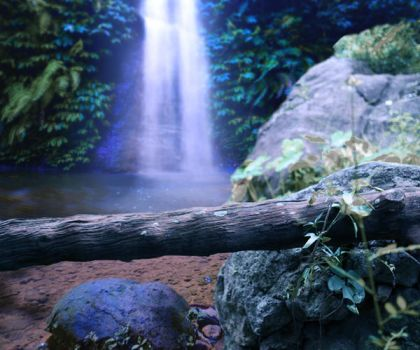 PREMIUM Premade Background - Moonlit Jungle by little-spacey